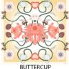 spring roar buttercup